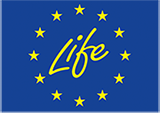 logo_life_01